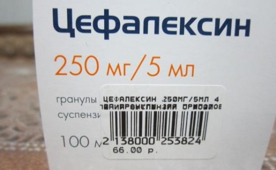 цефапексин
