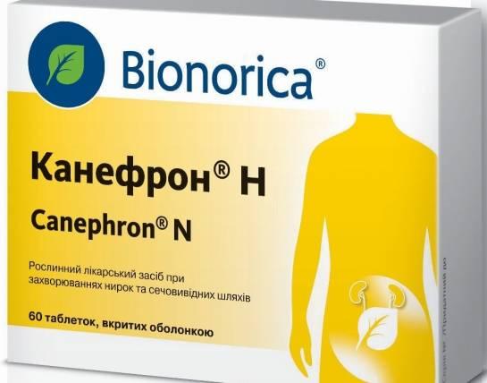Канефрон при цистите – помогают ли таблетки при лечении недуга, как принимать, отзывы